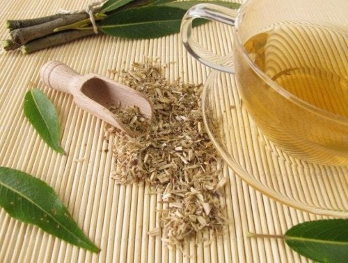 при лошо кръвообращение помага приема на чай от върба