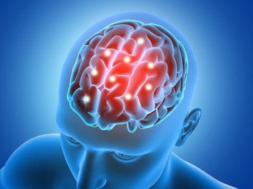 здравословно хранене и здрав мозък