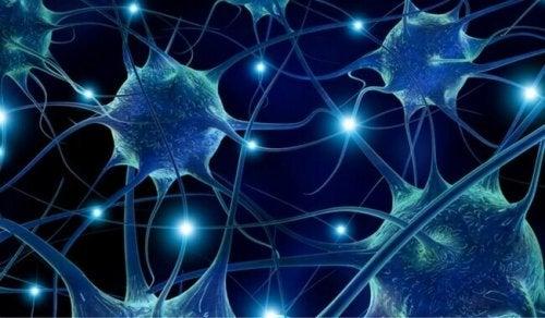 Рисунка на нервни клетки