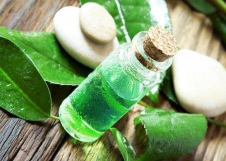 Маслото от чаено дърво ще ви помогне в борбата срещу абсцеса на зъба.