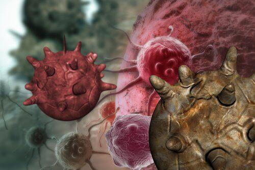 Митове за канцерогенните храни