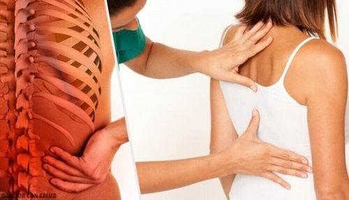 Под влиянието на стреса: промени и аномалии в гръбначния стълб