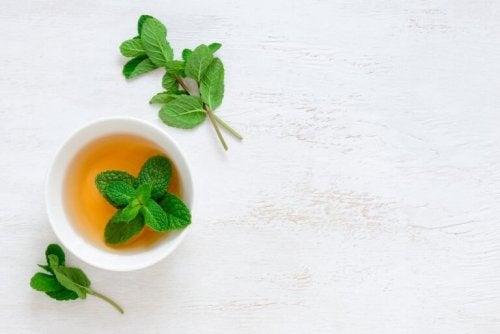 Ментов чай за лечение на кашлицата