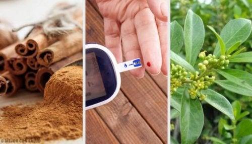 5 лечебни растения, помагащи при диабет