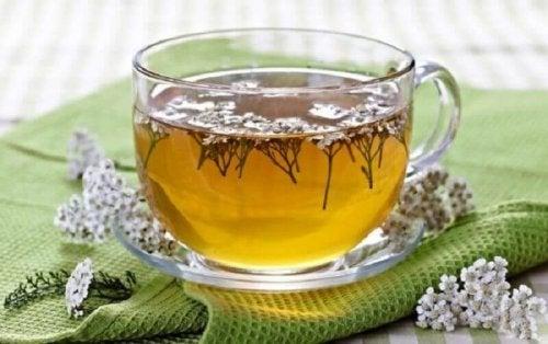 За децата с лош апетит: чай от бял равнец