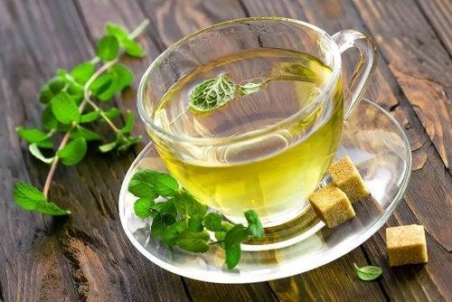 За да активирате метаболизма: чай от мента