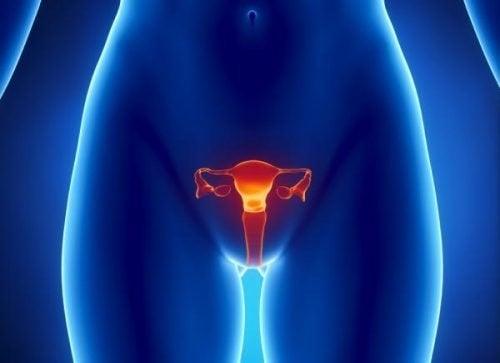 Как се поставя диагнозата рак на яйчниците?