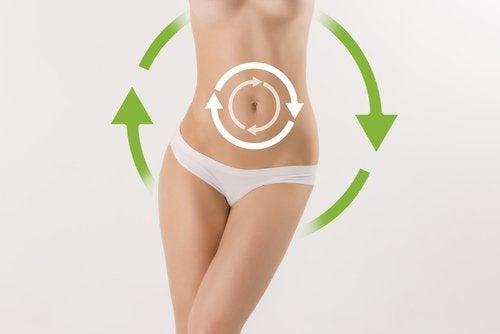 За да активирате метаболизма: снимка на женско тяло, от кръста на долу.
