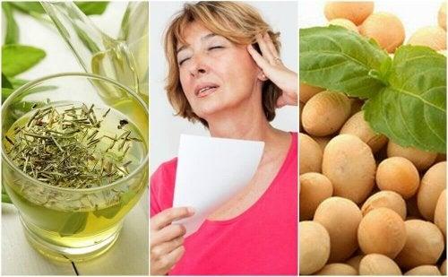 5 натурални продукта за контролиране на менопаузата