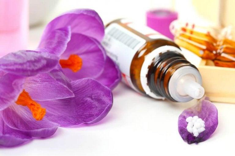 Научете лесно и бързо за терапията с цветните есенции на д-р Бах