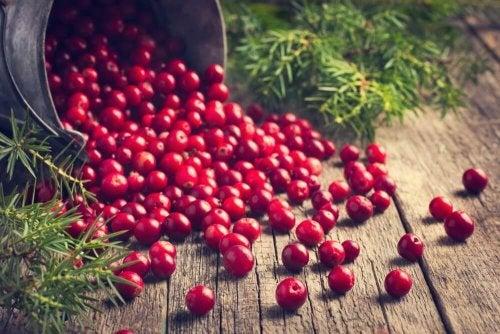 Кожните гъбични инфекции: снимка на кошница с червени боровинки
