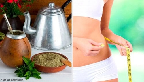 Ползите на чая мате: помага ли отслабването?