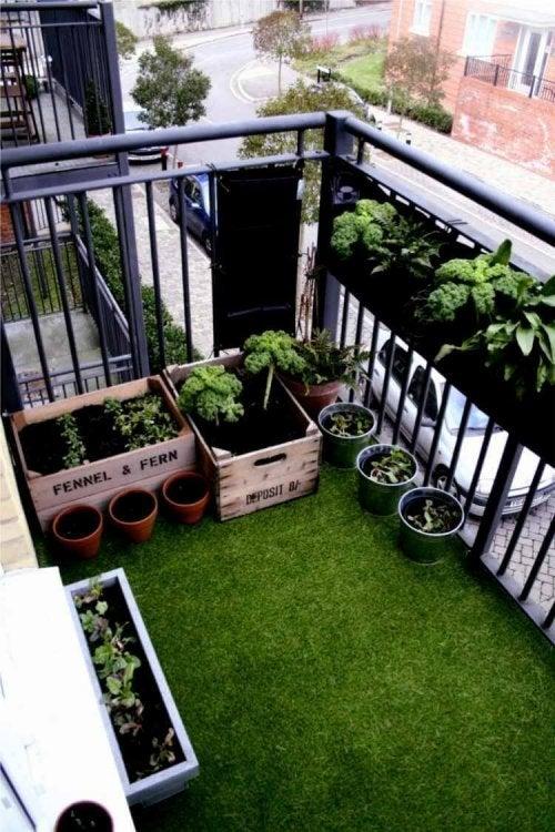 Мини градина на балкона