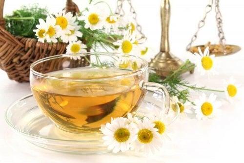 Чай от лайка в чаша и цветчета от билката лайка
