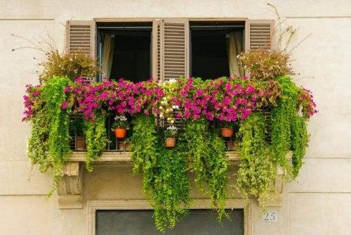 14 идеи за мини градини придаващи хармония на балкона