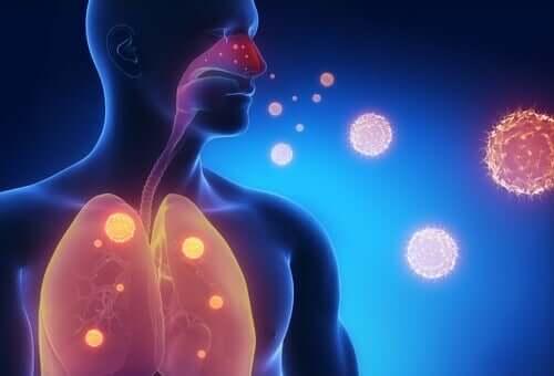 Три чая облекчаващи симптомите на грип
