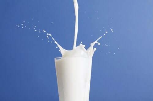 Пълномаслено или нискомаслено мляко: кое е по-добро?