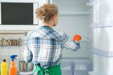 За почистване на хладилника: 8 екологично чисти средства