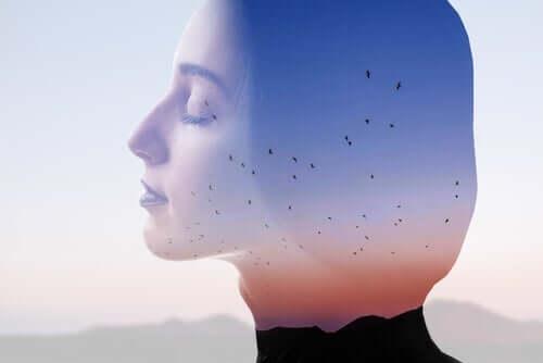 По време на хаос: лице на спокойна жена