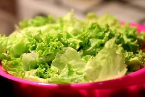 Сортове маруля: салата от маруля в червена купа