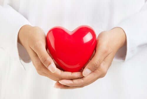 Лекарски ръце държат сърце