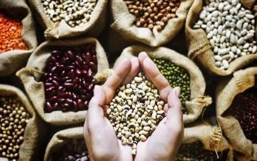 Снимка на различни бобови култури