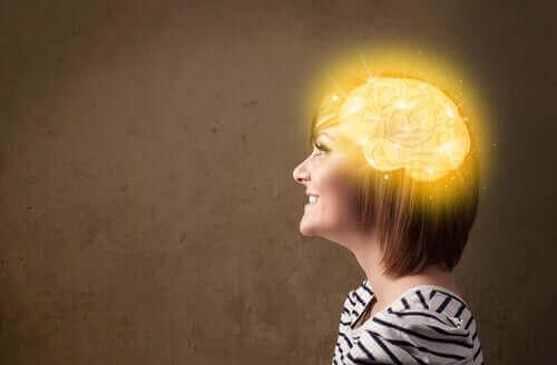 Мозъкът е сложен орган и работата му зависи от много фактори.