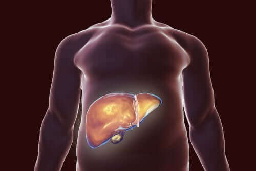Диета за здрав жлъчен мехур: плюсове и минуси
