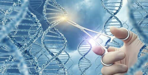 Какво представляват генните мутации?