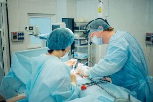 Снимка на хирурзи, които правят операция
