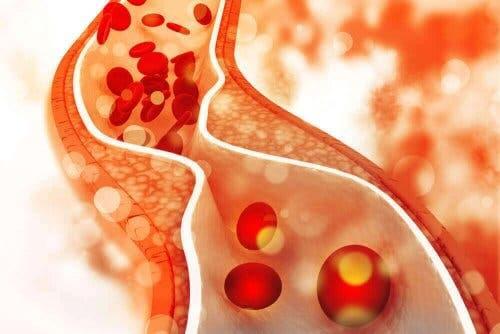 Кръв във вените и кръвни телца