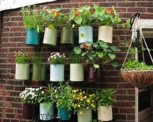 Вертикална градина с различни билки и цветя
