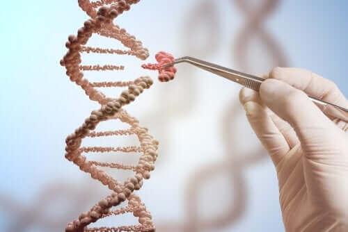 Генните мутации са различни видове.