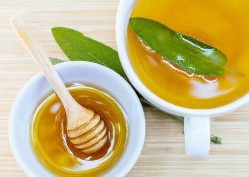 Салвия и мед при ожулвания