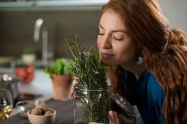Розмарин за здрава коса: три натурални рецепти