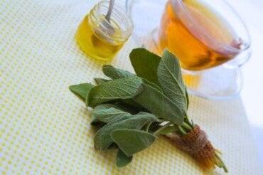Салвия и мед за лечение на порязвания и ожулвания
