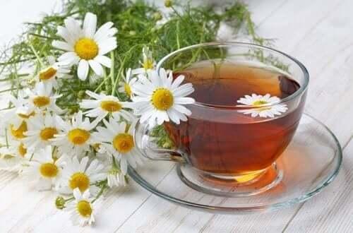Лайка цветове и чай от лайка