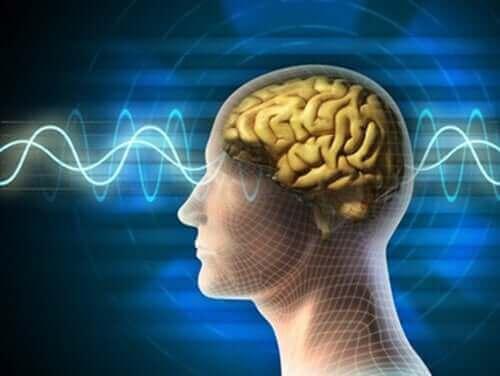 Рисунка на мозък и нерви