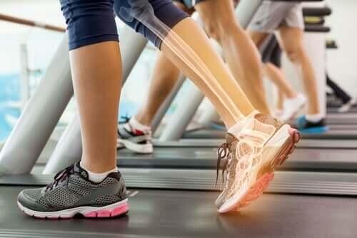 Тренировка във фитнес зала