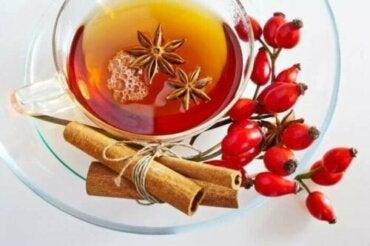 Ползи и противопоказания на чая от шипка