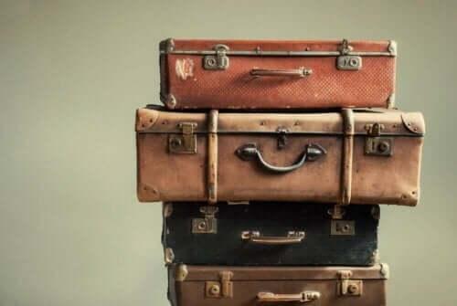 Куфарите могат да пренесат различни вектори на заболявания на пътешественика.