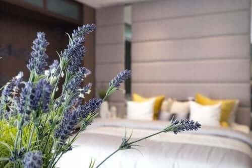 10 хитрости за добра хигиена на сън