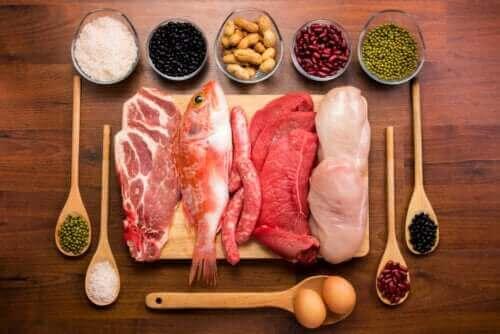 Всичко за функцията на протеините в организма