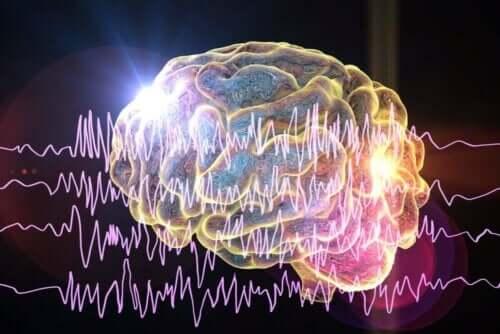 Видове епилепсия - всичко по темата