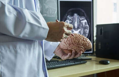 Множествената склероза е свързана с увреждането на миелина.