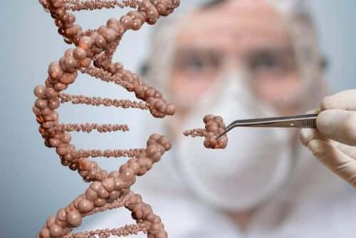 Молекула на ДНК