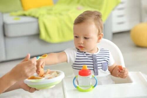 Захранването с твърда храна на бебето е важен етап в живота му.