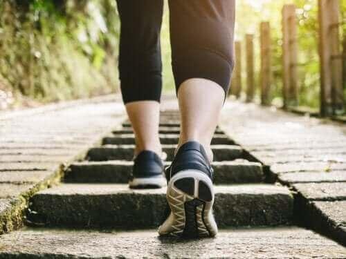 Полезна ли е за здравето разходката след хранене?